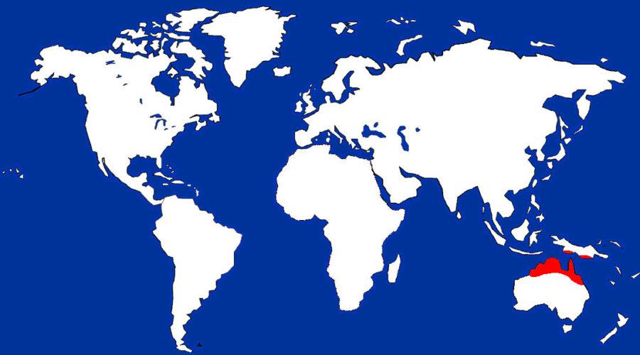 Blue Winged Kookaburra_map