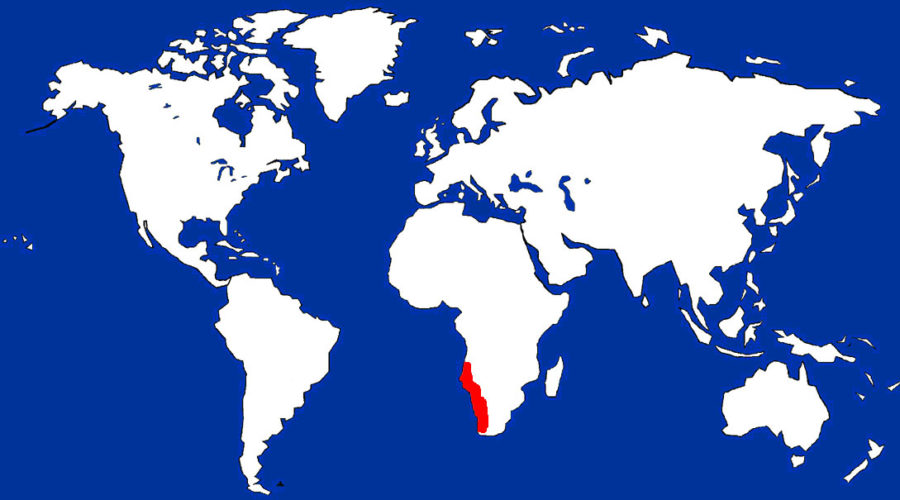 Meerkats map