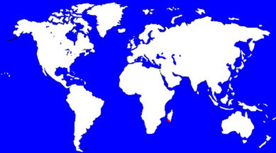 Ringtail Lemur Map